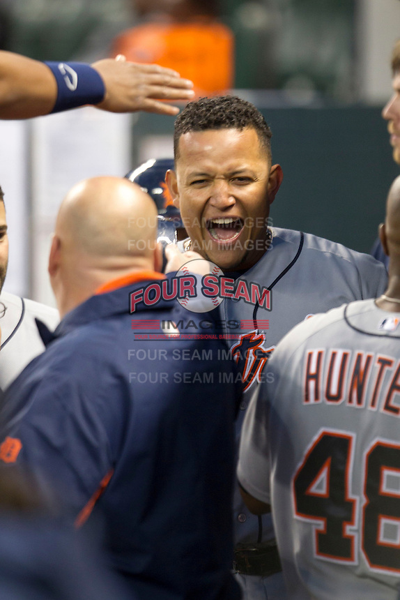 Detroit Tigers third baseman Miguel Cabrera (24) celebrates in the Tigers dugout after scoring in the fourth inning of the MLB baseball game against the Houston Astros on May 3, 2013 at Minute Maid Park in Houston, Texas. Detroit defeated Houston 4-3. (Andrew Woolley/Four Seam Images).