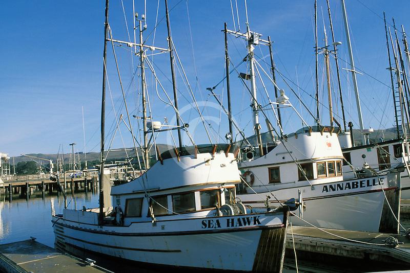 California, Bodega Bay, Fishing boats, Bodega Harbor