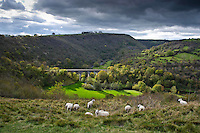 View of Monsal Dale with viaduct  from Monsal Head, Derbyshire.