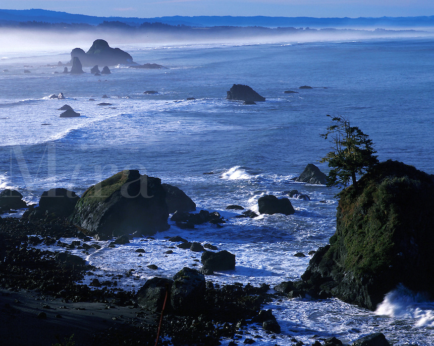 Moody, scenic view of Trinidad State Beach. California.