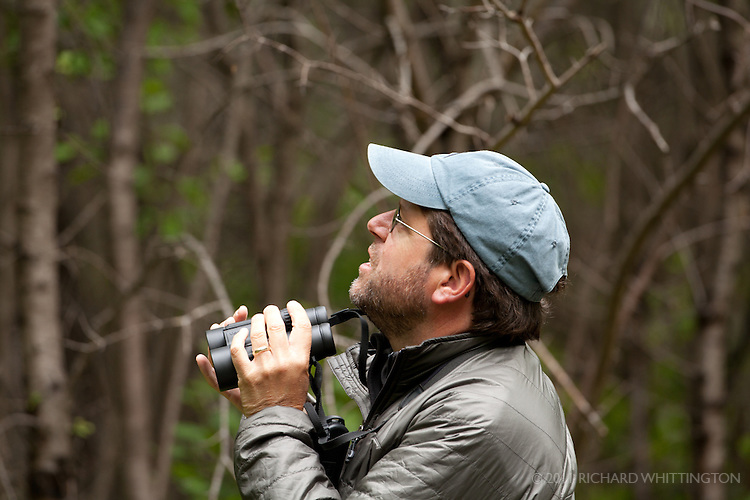"""Michael O'Brien was our VENT birding guide along with his wife Louise Zemaitis. He is a freelance artist, author, and environmental consultant living in Cape May, New Jersey. He has a passionate interest in bird vocalizations and field identification, and a serious addiction to migration and nocturnal birding. His travels have taken him throughout North and Central America and beyond. At home in Cape May, Michael serves as an Associate Naturalist with Cape May Bird Observatory for whom he conducts numerous workshops, and, for many years, conducted a fall songbird migration count. He is co-author of The Shorebird Guide, Flight Calls of Migratory Birds, and America's 100 Most Wanted Birds, and is primary author of Larkwire.com, an online application for learning bird sounds. His illustrations have been widely published in books and field guides, including the National Geographic Field Guide to the Birds of North America and the new Peterson field guides. Michael also has an intense interest in butterflies, leads several """"Birds & Butterflies"""" tours with his wife, Louise Zemaitis, and is coordinator of the Cape May Butterfly Count."""