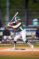 Farmingdale State Rams Cam Alfano (12) at bat during the first game of a doubleheader against the FDU-Florham Devils on March 15, 2017 at Lake Myrtle Park in Auburndale, Florida.  Farmingdale defeated FDU-Florham 6-3.  (Mike Janes/Four Seam Images)