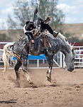 Riders thrown off bucking horses at Rodeo by Donnie Sexton