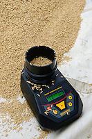 BURKINA FASO, Gaoua, rice hybrid seed production for Nafaso, measuring of moisture content with grain moisture meter / GIZ Projekt ProCIV Grüne Innovationszentren, WSK Reis, Saatgut Herstellung, Trocknung und Verpackung von Reis Hybrid Saatgut bei Saatgutproduzent Nahondomo Patenfo, Lieferung an Nafaso, Messung des Feuchtigkeitsgehalt