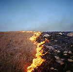 Fire (before and after), Lyon County, Kansas, 1992