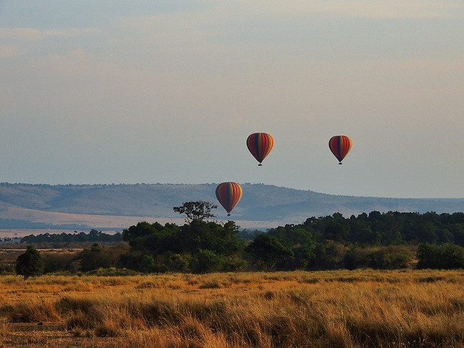 Hot Air Balloons, Governor's Camp, Maasai Mara
