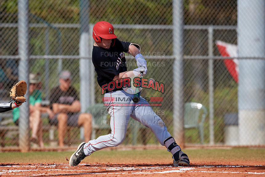 Ball State Cardinals first baseman Griffin Hulecki (13) bats during a game against the Saint Joseph's Hawks on March 9, 2019 at North Charlotte Regional Park in Port Charlotte, Florida.  Ball State defeated Saint Joseph's 7-5.  (Mike Janes/Four Seam Images)
