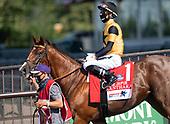 9th Jaipur Stakes - Oleksandra