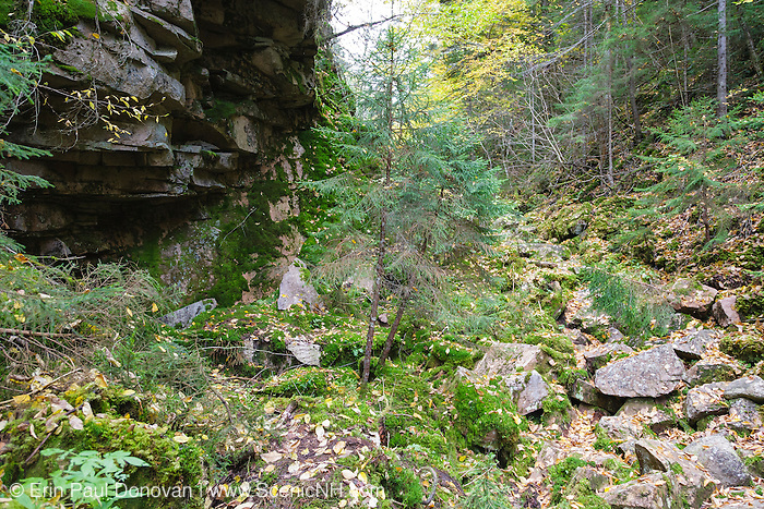 Devil's Hopyard during the autumn months in Stark, New Hampshire USA. Devil's Hopyard is a boulder-strewn gorge & cold-air talus forest.