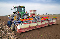 Cultivating for lettuce planting - Lincolnshire, May
