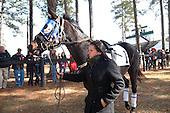 3rd Springdale Timber - Nondo