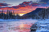 Tom Mackie, CHRISTMAS LANDSCAPES, WEIHNACHTEN WINTERLANDSCHAFTEN, NAVIDAD PAISAJES DE INVIERNO, photos,+Alberta, Banff National Park, Bow River, Canada, Canadian, Canadian Rockies, North America, Tom Mackie, USA, atmosphere, atmo+spheric, blue, cloud, clouds, cold, color, colorful, colour, colourful, freezing, frozen, horizontal, horizontals, landscape,+mist, mood, moody, national park, nature, pine tree, pine trees, red, river, riverside, scenic, season, snow, sunrise, sunse+t, tranquil, tranquility, travel, water, water's edge, weather, winter, wintery,Alberta, Banff National Park, Bow River, Cana+,GBTM150585-2,#xl#