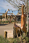Denver Zoo entrance, Denver, Colorado, USA John offers private photo tours of Denver, Boulder and Rocky Mountain National Park.