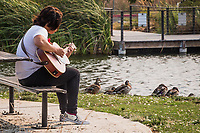 A young musician practices his guitar before an audience of ducks at a neighborhood park, late on a summer afternoon.