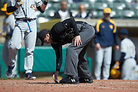 Umpire Anthony Perez cleans off home plate during the NCAA baseball game between the West Virginia Mountaineers and the Illinois Fighting Illini at TicketReturn.com Field at Pelicans Ballpark on February 23, 2020 in Myrtle Beach, South Carolina. The Fighting Illini defeated the Mountaineers 2-1.  (Brian Westerholt/Four Seam Images)
