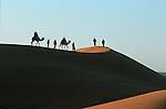 Randonnée chamelière dans les dunes de l'erg Chebbi au sud de Rissani.   Grand sud marocain. Maroc
