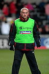 Nationwide Friendly International Wales v Sweden at the Liberty Stadium in Swansea : Wales David Cotterill...