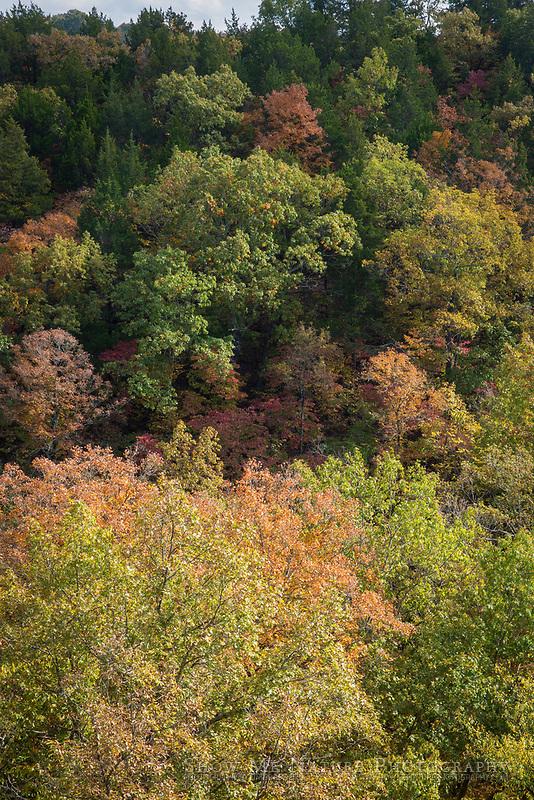 Fall colors in Ha Ha Tonka SP