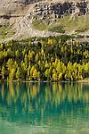.Myosotis lake au dessus de la vallée de Skoki.
