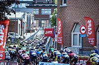 peloton<br /> <br /> Heistse Pijl 2020<br /> One Day Race: Heist-op-den-Berg > Heist-op-den-Berg 190km  (UCI 1.1)<br /> ©kramon