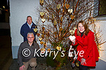 Anne Healy, James Furlong and Stuart Kelly at the Barraubh Memory Tree on Thursday