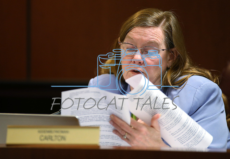 Nevada Assemblywoman Maggie Carlton, D-Las Vegas, works in committee at the Legislative Building in Carson City, Nev., on Wednesday, April 29, 2015. <br /> Photo by Cathleen Allison