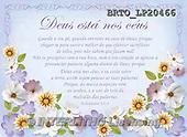 Alfredo, FLOWERS, BLUMEN, FLORES, paintings+++++,BRTOLP20466,#F# ,parchements,