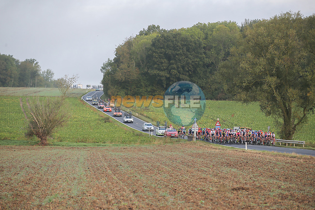 The peloton during La Fleche Wallonne Femmes 2020, running 124km from Huy to Mur de Huy, Belgium. 30th September 2020.<br /> Picture: ASO/Thomas Maheux | Cyclefile<br /> All photos usage must carry mandatory copyright credit (© Cyclefile | ASO/Thomas Maheux)