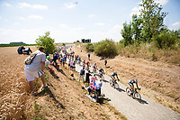 Team Bora-Hansgrohe leading the peloton over the 2nd cobble section (#14) of the stage. <br /> <br /> Stage 9: Arras Citadelle > Roubaix (154km)<br /> <br /> 105th Tour de France 2018<br /> ©kramon