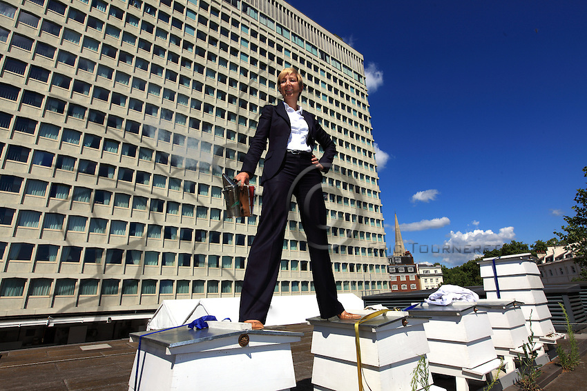 """Jo Hemesley in a suit on the hives of the Royal Lancaster Hotel.  Just a stone's throw from Hyde Park, the hotel's bees have been gathering honey from the flowers in the royal gardens. Jo joined the hotel's green team, which takes of the hives, the idea being to produce local honey to serve to guests but also to help the bees survive. """"With the help of our mentor, Luke Dixon, fives hives were set up in the summer of 2009 and today we have ten. My work at the hotel is no picnic: I'm part of the managing team and I handle corporate sales to foreign companies and I travel a lot. My first encounter with bees occurred in school when I was twelve years old. At that time, in the context of the Duke of Edinburgh's program, we were supposed learn a trade and I chose apiculture. I hadn't reopened a hive until we put into place the hives at the hotel. Bees are really fascinating creatures. I love the way the life is organized around the colony. Each bee has a role to play in the population's survival and I love feeling that harmony."""