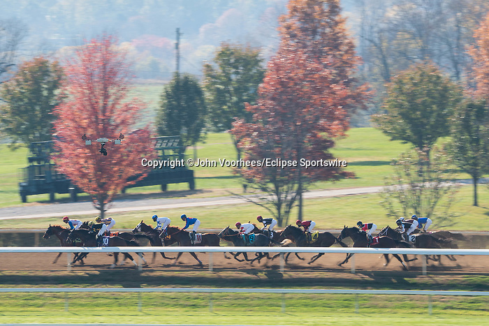 November 6, 2020: Horses race during the Thoroughbred Aftercare Alliance Stakes on Breeders' Cup Championship Friday at Keeneland on November 6, 2020: in Lexington, Kentucky. Scott Serio/Eclipse Sportswire/Breeders Cup/CSM