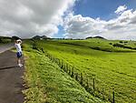 Kohala Mountain Rd View