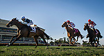 HALLANDALE FL - FEBRUARY 27: Faufiler #13, ridden by Edgar Prado crosses the finish line ahead of Partisan Politics #8, ridden by Javier Castellano and Celestine #1, ridden by Jose Lezcano to wins the Sand Spring Stakes at Gulfstream Park on February 27, 2016 in Hallandale, Florida.(Photo by Alex Evers/Eclipse Sportswire/Getty Images)