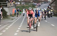 Jasper Stuyven (BEL/Trek-Segafredo) & Tom Boonen (BEL/Quick-Step Floors) leading the race<br /> <br /> 101th Ronde Van Vlaanderen 2017 (1.UWT)<br /> 1day race: Antwerp › Oudenaarde - BEL (260km)