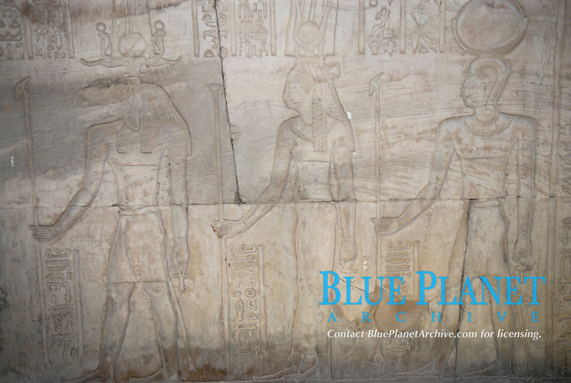 """Reliefs showing Egyptian gods on a wall at Kom Ombo. The Kom Ombo temple is a double temple built during the Ptolemaic dynasty. The word """"double"""" means that the temple has courts, halls, sanctuaries an rooms duplicated for two set of gods: Sobek the crocodile god and Horus the Elder. The temple is located in the town of Kom Ombo, south of Egypt."""