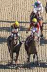 November 3, 2018: Shamrock Rose #14, ridden by Irad Ortiz, Jr., wins the Breeders' Cup Filly & Mare Sprint on Breeders' Cup World Championship Saturday at Churchill Downs on November 3, 2018 in Louisville, Kentucky. Carolyn Simancik/Eclipse Sportswire/CSM