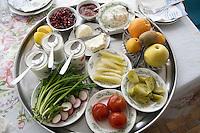 Azerbaijan. Oguz region. Oguz. Traditional starters for the azeri food and table's culture. Pomegranate, yoghurt, tomatoes, cucumbers, radish, onions, kiwi, apples, oranges, cheese, salads. Plates, glasses, spoons ad knifes.  Aluminium tray. Plastic tablecloth. © 2007 Didier Ruef