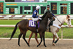 January 16, 2016: Colour Party (IRE) with Colby J. Hernandez up in the Marie G. Krantz Memorial Stakes race at the Fairground race course in New Orleans Louisiana. Steve Dalmado/ESW/CSM