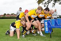 Wasps 20110907