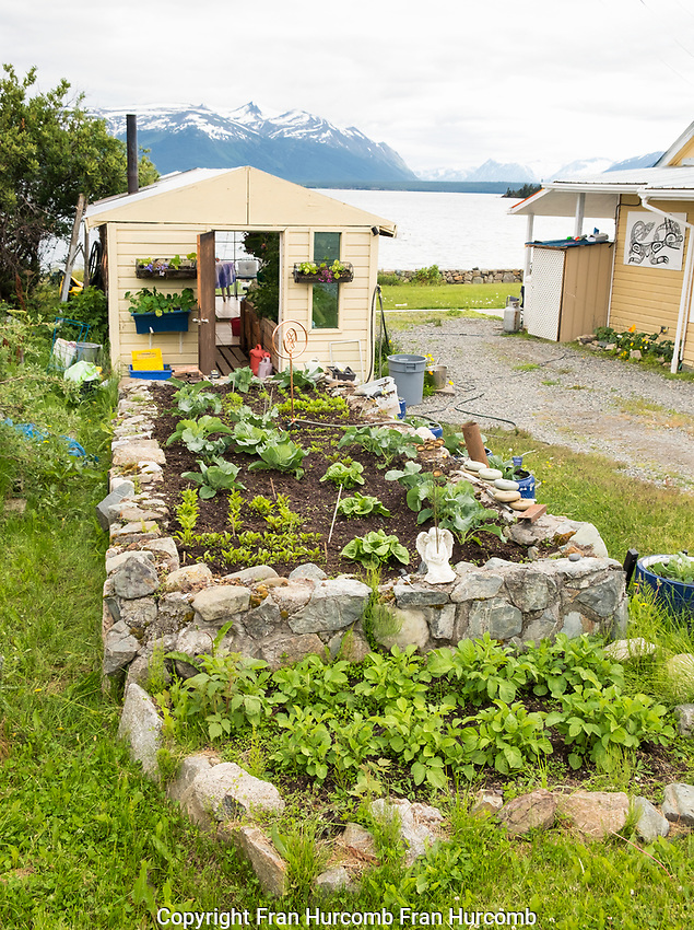 Atlin, garden