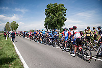 The 15th stage came to an abrupt halt after just a few minutes (3km) of racing following a large crash that forced the race to temporarily be neutralized as medical assistence was temporarily stretched to the max. <br /> <br /> 104th Giro d'Italia 2021 (2.UWT)<br /> Stage 15 from Grado to Gorizia (147km)<br /> <br /> ©kramon