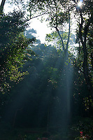 Early morning Kandy, Sri Lanka