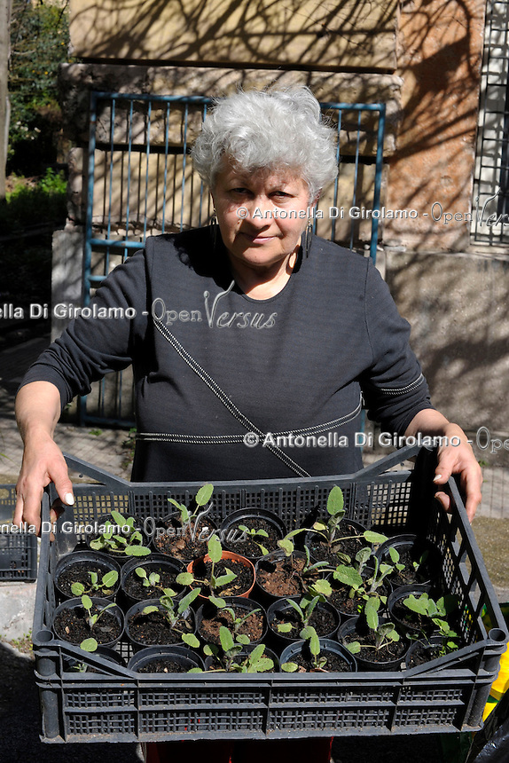 """Lucica Irimie, agronoma 60 anni, si occupa dell """"Orto e Clinica delle piante"""" della Casa Lucha Y Siesta, struttura il sostegno delle donne in difficoltà.<br /> Lucica Irimie, agronomist 60 years old, is engaged in """"Ortho Clinical and plants"""" of the Lucha Y Siesta, structure for support of women in need."""