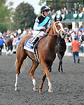 Tara From the Cape and jockey Ramon Dominguez after finishing 4th in the Darley Alcibiades at Keeneland Racecourse.October 5, 2012.