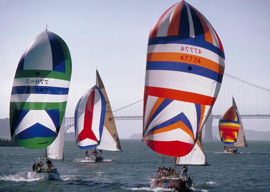 Sailboat racing, sailboats, seascape. Bay.