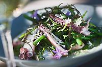 Europe/France/Provence-Alpes-Côte d'Azur/13/Bouches-du-Rhône/Env d'Arles/Le Sambuc: Salade de poulpe  aux algues, haricots verts et pesto de roquette , recette d' Armand Arnal  du Restaurant Bio: La Chassagnette