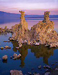 Mono Basin Scenic Area, CA<br /> Pre-dawn light on tufa tower with reflections on the calm surface of Mono Lake