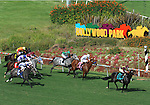 October 3, 2010.wins the 5th at Hollywood Park, Inglewood, CA_Cynthia Lum/Eclipse Sportswire.com