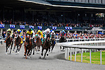 31 October 2009: Horses running in the fourth race round the bend in front of the grandstands at Keeneland. Keeneland's fall festival came to an undramatic end with overcast skies and low crowd numbers.