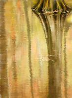 Cypress reflection early autumn at Swan Lake